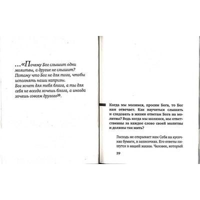 Чтобы Ангел не улетал. Пастырские беседы о главном... Протоиерей Сергий Николаев. Вид 2